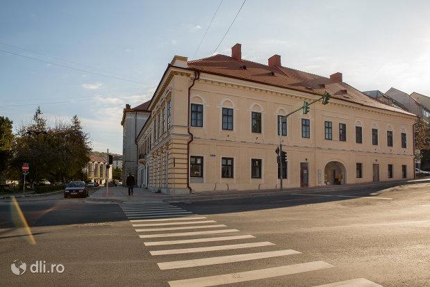 drumul-spre-teatrul-orasenesc-transilvania-din-zalau-judetul-salaj.jpg
