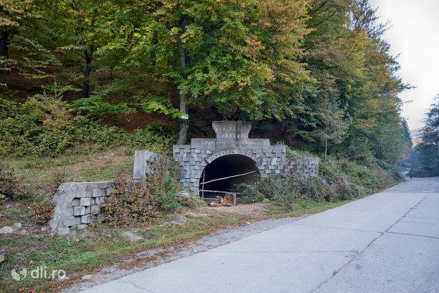 drumul-spre-tunelul-em-herja-hubert-dintre-chiuzbaia-si-baia-sprie-judetul-maramures-2.jpg