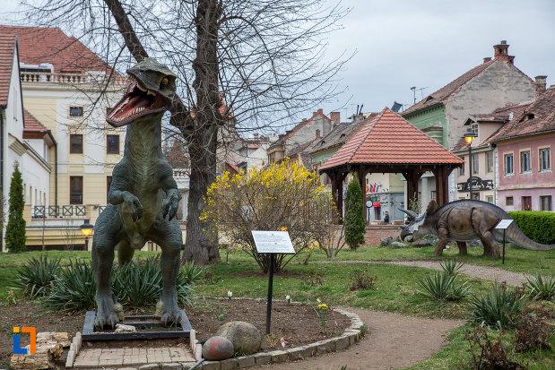 exponate-de-la-muzeul-de-istorie-naturala-din-sibiu-judetul-sibiu.jpg