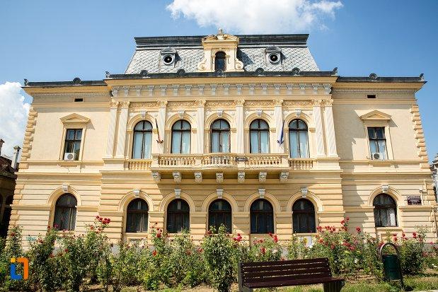 fatada-de-la-casa-moscovici-din-botosani-judetul-botosani.jpg