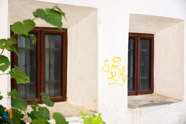 ferestre-de-la-casa-manolache-iorga-din-botosani-judetul-botosani.jpg