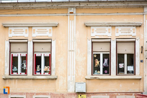 ferestre-de-la-casa-str-nicolae-balcescu-nr-49-din-fagaras-judetul-brasov.jpg