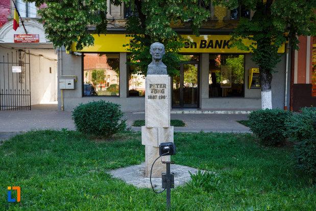 foto-cu-bustul-lui-peter-jung-din-jimbolia-judetul-timis.jpg