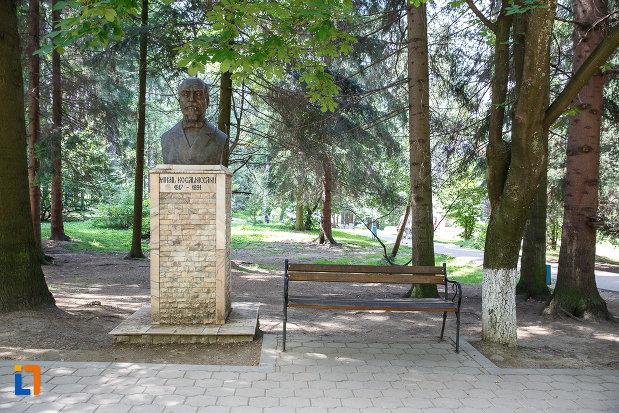 fotografie-cu-bustul-lui-mihail-kogalniceanu-grupul-statuar-din-vatra-dornei-judetul-suceava.jpg