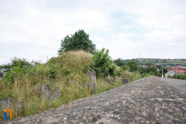 fotografie-cu-cimitirul-medieval-evreiesc-din-siret-judetul-suceava.jpg