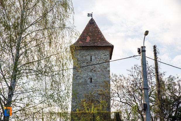 fotografie-cu-turnul-studentului-croitorilor-din-sebes-judetul-alba.jpg