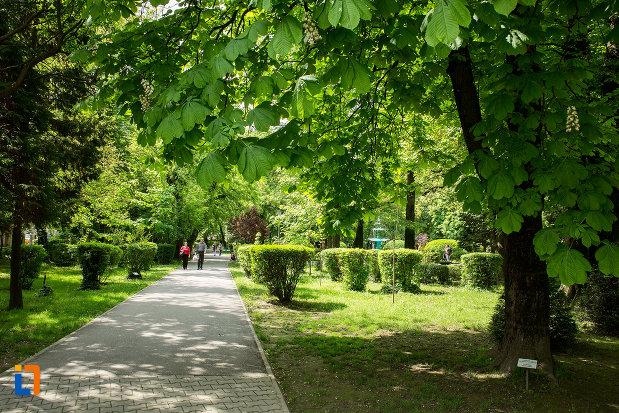 fotografie-din-gradina-publica-sau-parcul-municipal-constantin-brancusi-din-targu-jiu-judetul-gorj.jpg