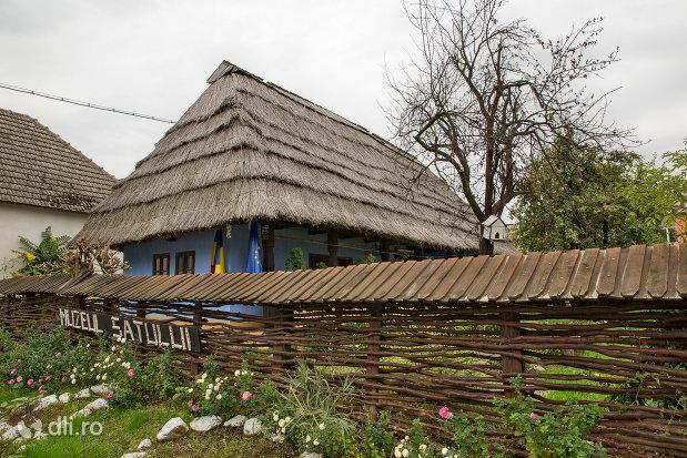 gard-de-nuiele-din-muzeul-satului-din-tautii-magheraus-judetul-maramures.jpg
