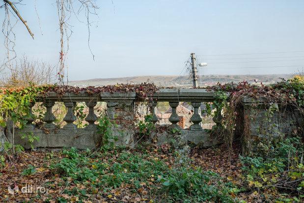 gard-langa-castelul-stubenberg-din-sacueni-judetul-bihor.jpg