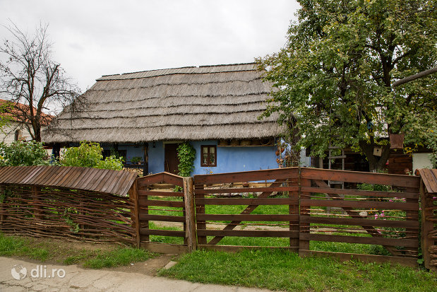 gard-si-poarta-din-muzeul-satului-din-tautii-magheraus-judetul-maramures.jpg