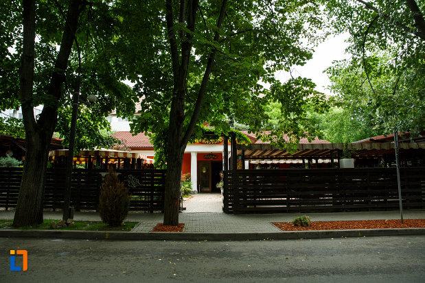 gardul-de-la-casa-anghel-saligny-din-focsani-judetul-vrancea.jpg