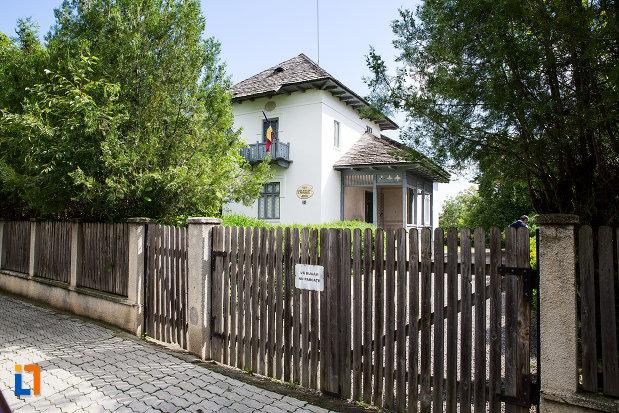 gardul-de-la-casa-atelier-g-petrascu-din-targoviste-judetul-dambovita.jpg