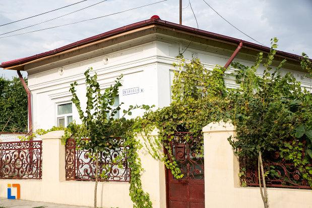 gardul-de-la-casa-din-str-ovidiu-nr-8-din-harsova-judetul-constanta.jpg