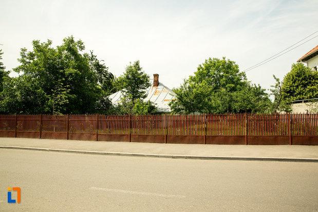 gardul-de-la-casa-din-str-tudor-vladimirescu-din-ramnicu-sarat-judetul-buzau.jpg