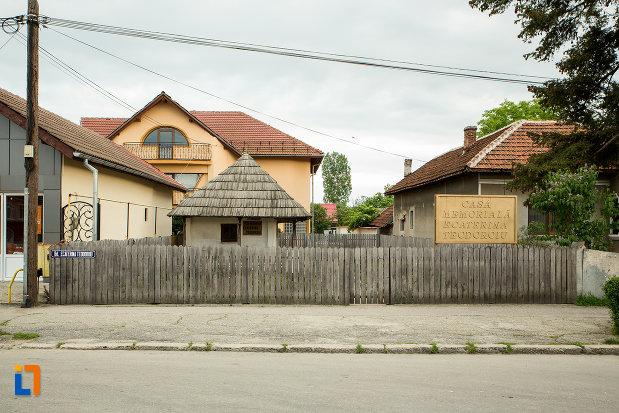 gardul-de-la-casa-memoriala-ecaterina-teodoroiu-din-targu-jiu-judetul-gorj.jpg