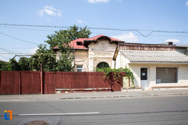 gardul-de-la-casa-mihai-hovaghinian-din-urziceni-judetul-ialomita.jpg