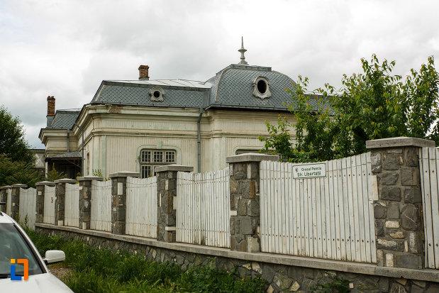 gardul-de-la-casa-nicolae-milea-din-panciu-judetul-vrancea.jpg