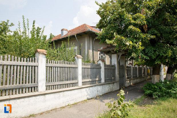 gardul-de-la-casa-olimpia-popescu-din-rosiorii-de-vede-judetul-teleorman.jpg