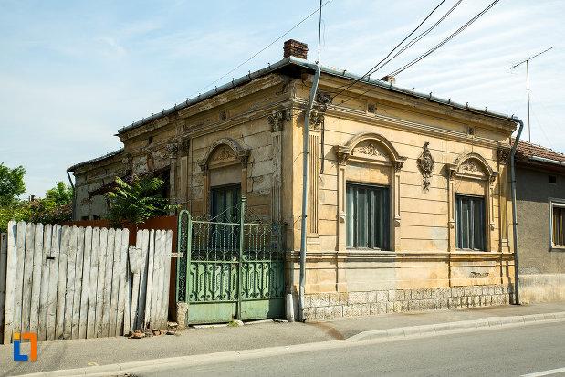 gardul-de-la-casa-popescu-marieta-din-drobeta-turnu-severin-judetul-mehedinti.jpg