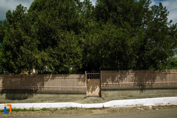 gardul-de-la-casa-sergiu-seferovici-din-panciu-judetul-vrancea.jpg
