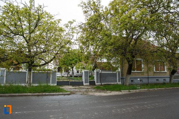 gardul-de-la-expozitia-de-arta-populara-iulia-folea-troceanu-buzias-judetul-timis.jpg