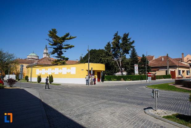 gardul-de-la-muzeul-de-etnografie-si-arta-populara-din-orastie-judetul-hunedoara.jpg
