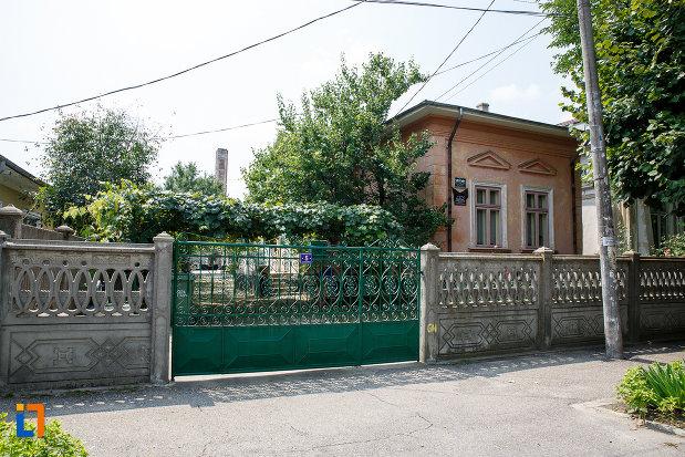 gardul-si-poarta-de-la-casa-nicu-traila-din-rosiorii-de-vede-judetul-teleorman.jpg