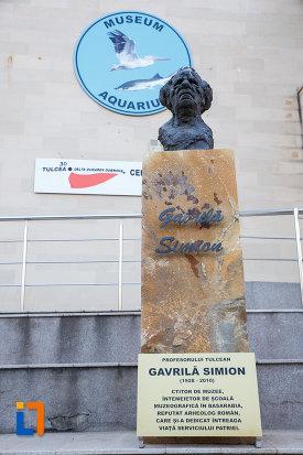 gavrila-simion-centrul-ecoturistic-delta-dunarii-din-tulcea-judetul-tulcea.jpg