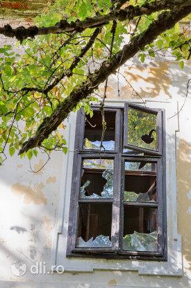 geam-castelul-vecsey-din-livada-judetul-satu-mare.jpg