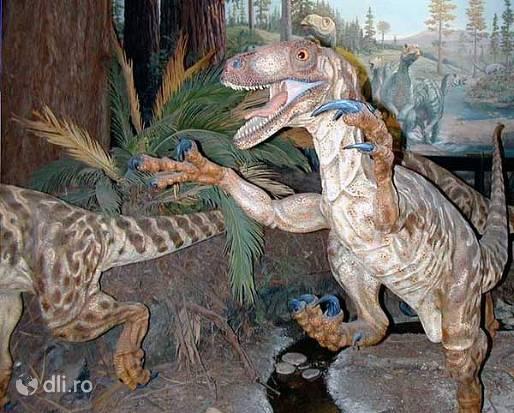 geoparcul-dinozaurilor-tara-hategului.jpg