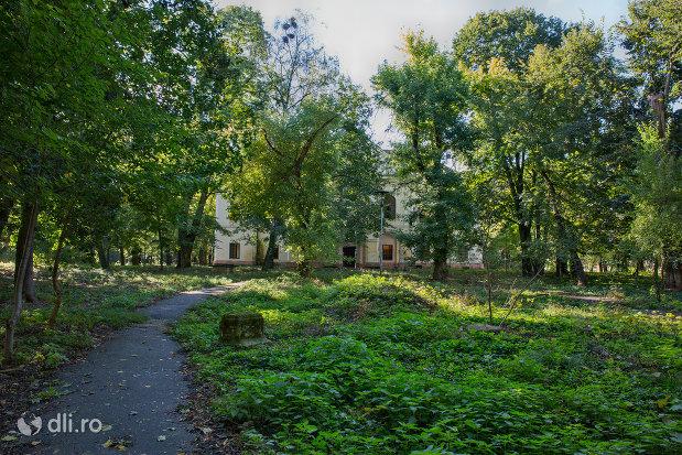 gredina-castelul-vecsey-din-livada-judetul-satu-mare.jpg
