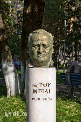 ibscriptia-de-pe-statuia-lui-pop-mihai-din-negresti-oas.jpg