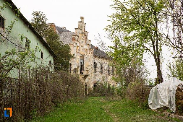 imagine-cu-ansamblul-castelului-teleky-din-uioara-de-sus-judetul-alba.jpg