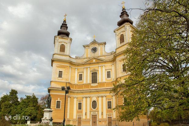 imagine-cu-bazilica-romano-catolica-din-oradea-judetul-bihor.jpg