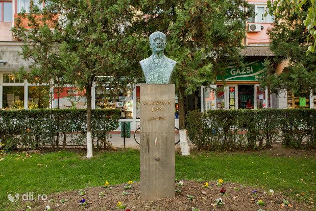 imagine-cu-bustul-lui-dr-andrassy-erno-din-valea-lui-mihai-judetul-bihor.jpg