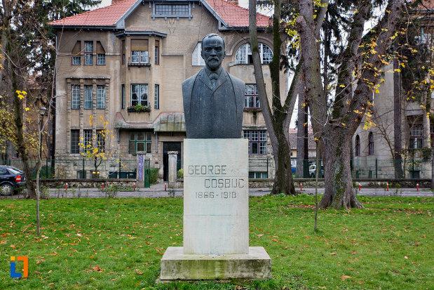 imagine-cu-bustul-lui-george-cosbuc-din-parcul-central-cluj-napoca-judetul-cluj.jpg