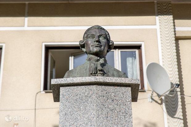 imagine-cu-bustul-lui-ignac-born-din-cavnic-judetul-maramures.jpg