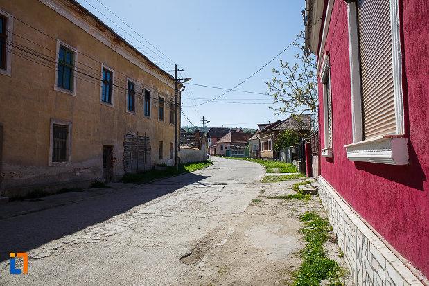 imagine-cu-casa-memoriala-dr-aurel-vlad-din-orastie-judetul-hunedoara.jpg