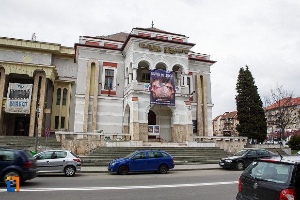 imagine-cu-cazinoul-functionarilor-azi-teatrul-i-d-sarbu-din-petrosani-judetul-hunedoara.jpg