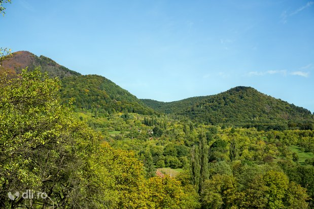 imagine-cu-cele-5-dealuri-din-rezervatia-naturala-tinoavele-din-camarzana-judetul-satu-mare.jpg
