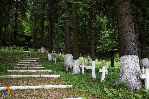 imagine-cu-cimitirul-eroilor-din-azuga-judetul-prahova.jpg