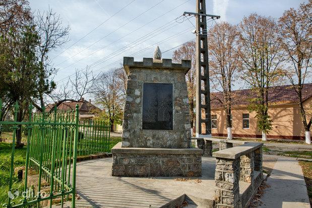imagine-cu-monumentul-eroilor-cazuti-in-razboaiele-mondiale-i-si-ii-din-diosig-judetul-bihor.jpg