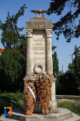 imagine-cu-monumentul-eroilor-din-ciacova-judetul-timis.jpg