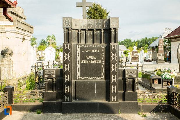 imagine-cu-monumentul-funerar-al-tipografului-n-d-milosescu-din-targu-jiu-judetul-gorj.jpg