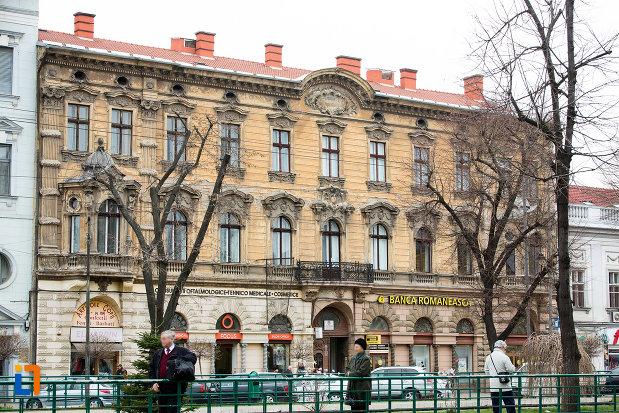 imagine-cu-palatul-herman-gyula-din-arad-judetul-arad.jpg