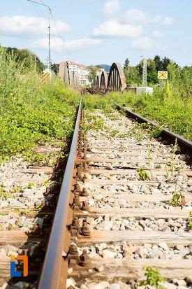 imagine-cu-podul-de-cale-ferata-din-pucioasa-judetul-dambovita-2.jpg