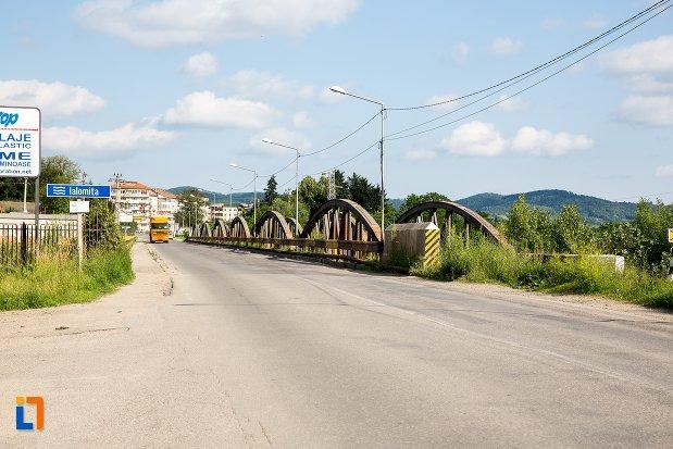 imagine-cu-podul-de-cale-ferata-din-pucioasa-judetul-dambovita.jpg