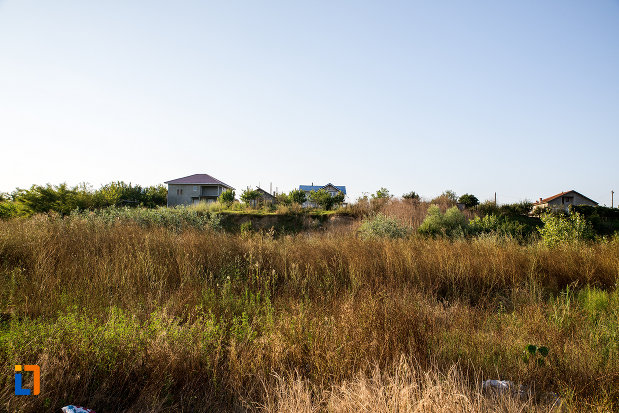 imagine-cu-ruinele-conacului-manu-1827-din-budesti-judetul-calarasi.jpg
