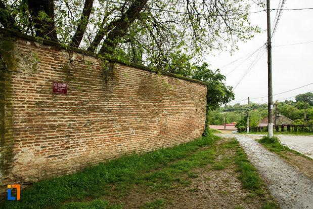 imagine-cu-zidul-inconjurator-de-la-manastirea-segarcea-judetul-dambovita.jpg