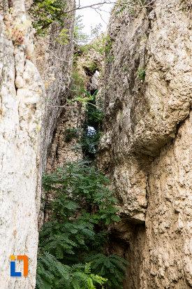 imagine-de-la-situl-arheologic-cetatea-carsium-din-harsova-judetul-constanta.jpg
